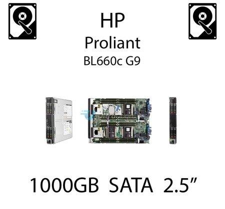 """1000GB 2.5"""" dedykowany dysk serwerowy SATA do serwera HP ProLiant BL660c G9, HDD Enterprise 7.2k, 6Gbps - 655710-B21   (REF)"""