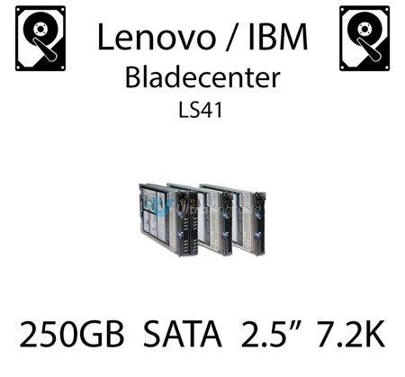 """250GB 2.5"""" dedykowany dysk serwerowy SATA do serwera Lenovo / IBM Bladecenter LS41, HDD Enterprise 7.2k, 600MB/s - 81Y9722"""