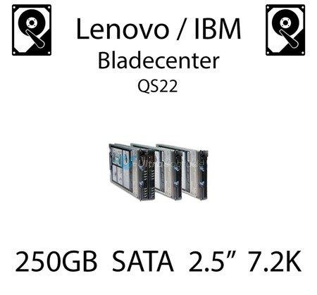 """250GB 2.5"""" dedykowany dysk serwerowy SATA do serwera Lenovo / IBM Bladecenter QS22, HDD Enterprise 7.2k, 600MB/s - 81Y9722"""