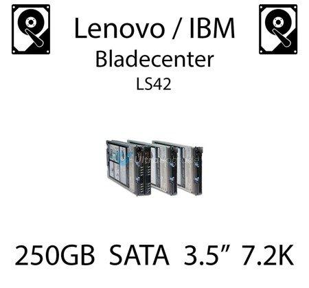 "250GB 3.5"" dedykowany dysk serwerowy SATA do serwera Lenovo / IBM Bladecenter LS42, HDD Enterprise 7.2k, 300MB/s - 39M4526"