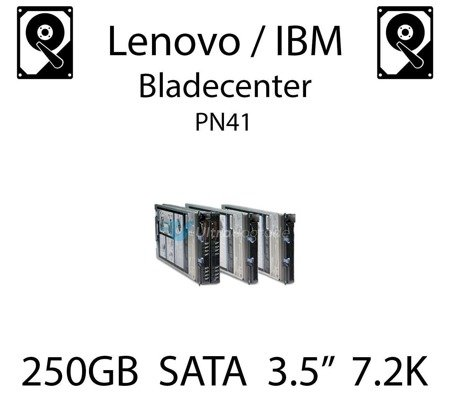 "250GB 3.5"" dedykowany dysk serwerowy SATA do serwera Lenovo / IBM Bladecenter PN41, HDD Enterprise 7.2k, 300MB/s - 39M4526"